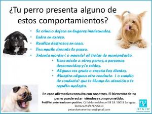 detección problemas de conducta perro