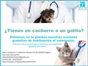 Sesiones de habituación al veterinario.